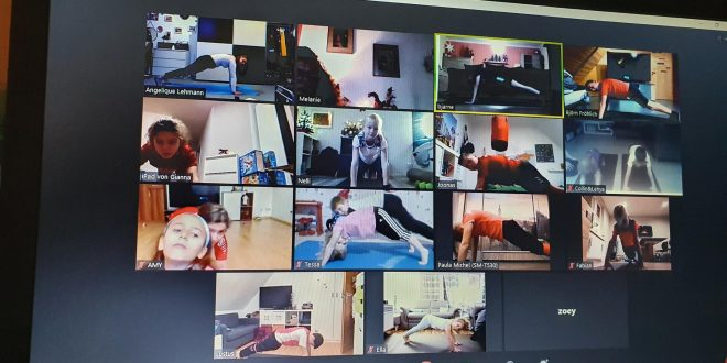 online Training über die Zoom Plattform